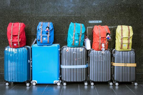 organizer podróżny