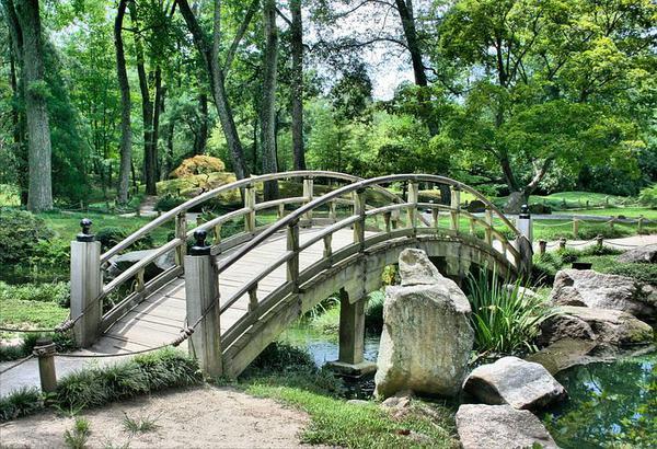 Jak zrealizować marzenia o pięknym ogrodzie?