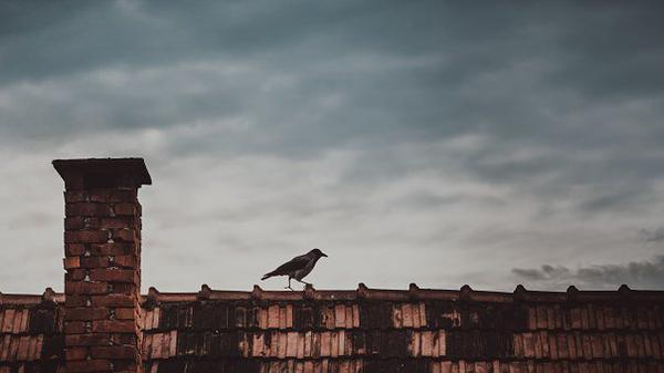 najlepsze ocieplanie dachów na Śląsku